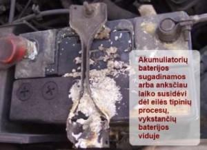 automobilio akumuliatorius
