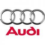 Audi kompanijos požiūris į vidaus degimo variklius
